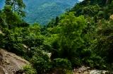 rishikesh_paysage-2