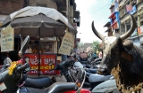 ahmedabad_ville-9