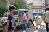 ahmedabad_ville-9b