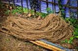 kochi_backwaters_fibre_coco-1h
