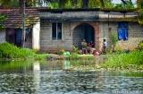 kochi_backwaters_matin-5