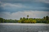 kochi_backwaters_pluie-1