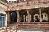 hampi_elephante_lakshmi-9b