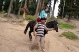 kashmir_perhagam_descente_cheval-3