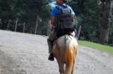 kashmir_perhagam_cheval-6