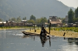 kasmir-srinagar-le-lac-balade-3b
