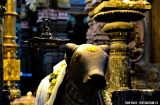 madurai-temple-minakshi-2d