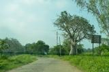 mandu_excursion_samedi-1