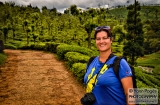 ooty_plantations_the-6