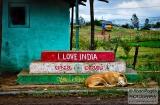 ooty_village_dejeuner_love_india-4