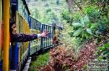 ooty_dans_le_train-2e