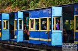 ooty_gare_aux_singes-9