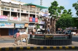 ahmedabad_matinee-2