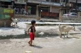 ahmedabad_ville-5