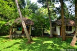 alleppey_guesthouse-1