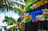 alleppey_marari_beach_bateaux-6