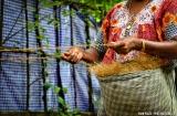 kochi_backwaters_fibre_coco-1c