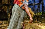 kochi_backwaters_fibre_coco-1g