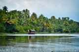 kochi_backwaters_matin-7