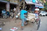 delhi_en_rickshaw-7