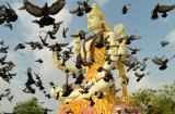dwarka_statue_shiva_et_temple-4bis