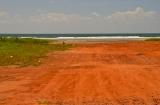 goa_morjim_beach-1