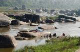 hampi_baignade_elephante-1