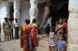 hampi_elephante_lakshmi-6b