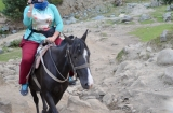 kashmir_perhagam_cheval-5