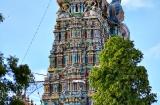 madurai-temple-minaksh-4