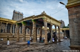madurai-temple-minakshi-1