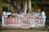 madurai-temple-minakshi-1c