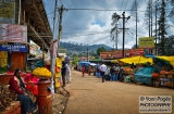 ooty_marche-1