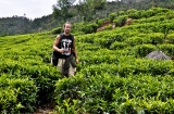 ooty_plantations_the-1e