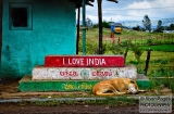 ooty_village_dejeuner_love_india-4