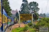 ooty_gare-6