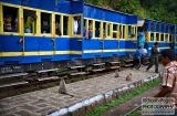ooty_gare_aux_singes-5