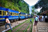 ooty_gare_aux_singes-6