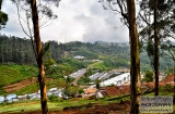 ooty_paysages-5