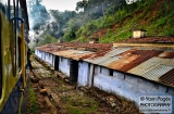 ooty_paysages_et_train-8