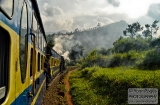 ooty_paysages_et_train-9b