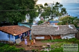 ooty_paysages_kerala-9c